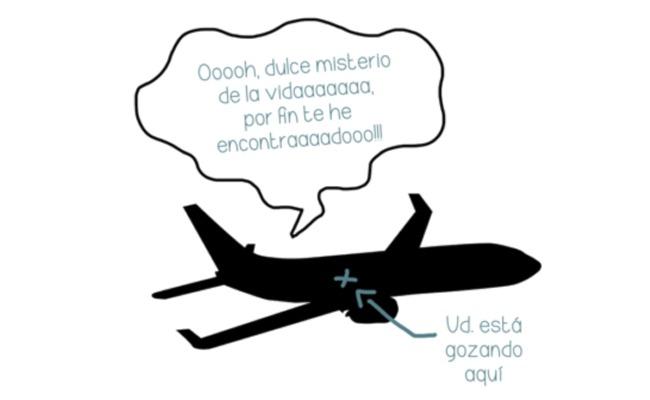 Polvo en avion