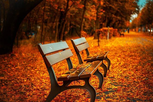 me-gusta-otoño1