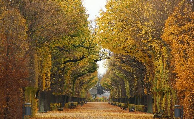 me-gusta-otoño2