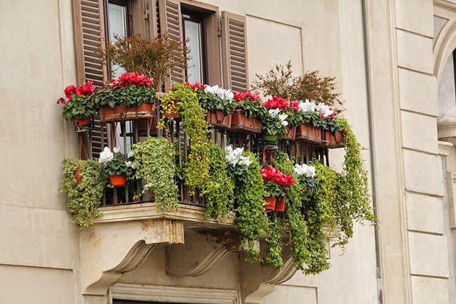 jardin-de-revista-balcon