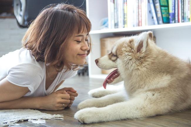 eres-viejuno_paseo-perro
