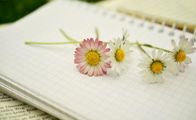 cuaderno-flores