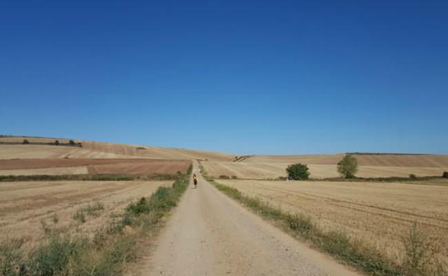 camino de santiago viaje interior